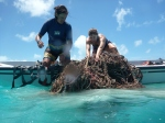Meg and Cat haul in a section of debris at Whale-Skate reef. (Photo by Megan Juran)
