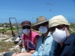 Cat, Meg, and Megan get ready to do a necropsy on a dead-for-several days monk seal. The masks have a generous smear of Vic's Vaporub on them to help make the smell a little less horrible. (Photo by Megan Juran)