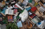 A Laysan albatross crushed by a wall panel and bookshelf that were blown from the building. (Photo by Abram Fleishman)